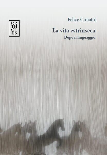 Felice Cimatti, La vita estrinseca
